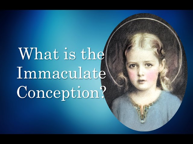 Dec 8 - The Immaculate Conception
