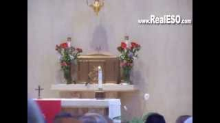 Bird Flies into Church on Pentecost