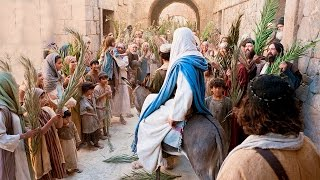 The Events of Palm Sunday