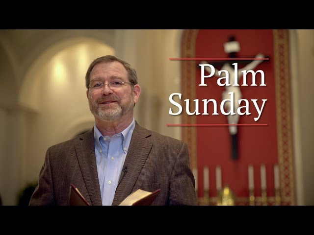 Palm Sunday with Jeff Cavins