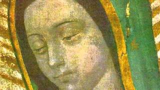 The Miraculous Image-OLG