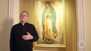 Bishop Barron on Our Lady of Guadalupe